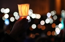 [썸clip] 길가에 버려지다...'100만 촛불' 민심의 힘
