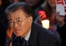[박효정의 정치야설(野說)] 한화이글스로 보는 문재인의 반(反) 개헌론