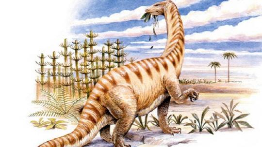 [헬로 사이언스]2억년 전 공룡화석서 단백질 발견