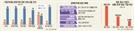 """[덫에 걸린 경제민주화] 불공정 고발, 大·中企비율 16:84...""""전속고발권 폐지 역효과날판"""""""