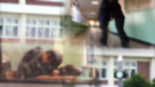 '시사매거진2580' 숭의초 폭력 은폐 사건, '학폭위' 제도 문제점은?