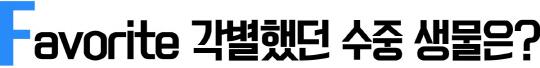 [썸타는 만남 A to Z]'뽀통령' 능가하는 아쿠아리스트가 들려주는 '쿨한' 이야기