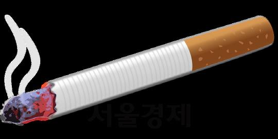'양담배' 봉인에서 풀려나다