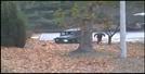 [영상] CCTV 공개…자유 향한 북한병사의 목숨 건 귀순 장면