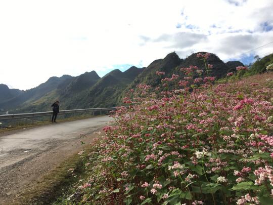 [두유바이크]51회인생 라이딩, 베트남 모터사이클 투어-마지막편