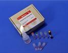 바이오맥스, 식품안전 필수 '히스타민 신속 검출 키트' 국내 최초 개발