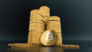 '정부의 비트코인 규제, 가상화폐 가치 높일 수도'