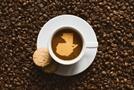 #21. 새로운 커피 강국 과테말라!
