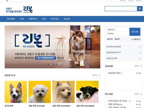 강동구, 유기견 정보 한눈에 보는 '리본센터' 홈페이지 개설