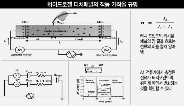 [이달의 과학기술인상]선정윤 서울대 교수 '손목 터치, 글씨 쓰고 연주하고 TV 켠다'