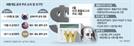 [환율·원자재...악재 쌓인 한국경제]1개월 주기·총액 공개 땐 '패' 노출...당국 손발 묶여 수출 직격탄