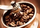 #30. 커피 추출의 필수 외부 요소인 그라인더