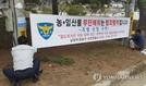 봄철 사유지·국유림서 산나물 무심코 캐다 절도범 전락