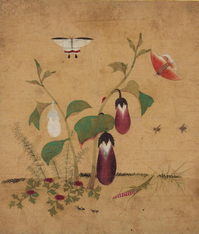 [조상인의 예(藝)-63신사임당 '초충도']고고한 양귀비꽃에 날아든 나비 한쌍...多産·長壽를 기원하다