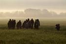 [글로벌Who]가족을 위해 전쟁을 피해 고난의 2,000㎞...오늘도 그들은 死線을 넘는다