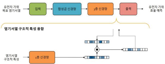 [이달의 과학기술인상-윤성로 교수]서열형 빅데이터 정밀분석 AI…바이오·자율차 등 쓰임새 많아