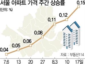단속 무색한 서울아파트...7주째 가격상승폭 커져