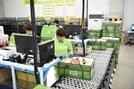 롯데슈퍼, 온라인 배송 날개 단다…'롯데프레시 울산센터점' 오픈
