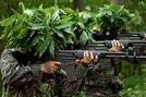 255명 뽑는 '육군 장기복무 부사관' 몰려든 사람이 무려