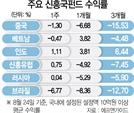 """""""신흥국 리스크 없다"""" 독야청청 인도펀드"""