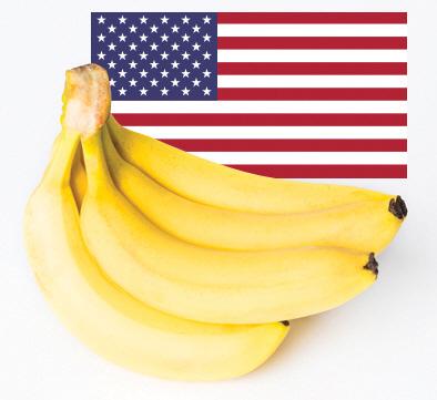 [만파식적] 바나나공화국
