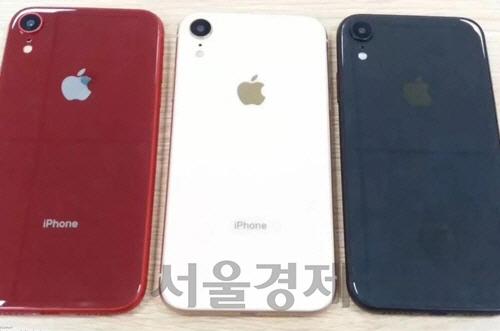 아이폰 보급형 신모델 'XC' 가격은 699달러 추정
