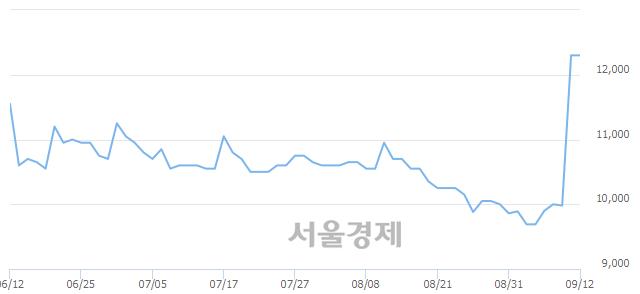 유한미글로벌, 장중 신고가 돌파.. 12,950→13,200(▲250)