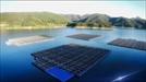 [시그널 단독] '5,000억원·300㎿' 세계 최대규모 수상 光電… 새만금서 돛 올린다