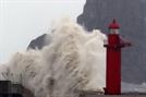 [디센터 아카데미(2부)]⑤-1 빈약한 투자정보·투자자보호, 후폭풍에 ICO 휘청