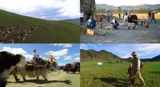 '세계테마기행' 저 푸른 초원 위에, 몽골 2부…'야크의 고향, 아르항가이'
