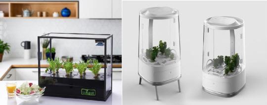 디자인 입은 'IoT식물재배기' 잘 나가네