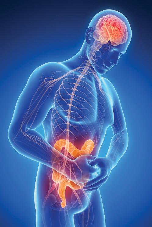 [MEDICAL COLUMN] 삶의 질 떨어뜨리는 과민성 장증후군