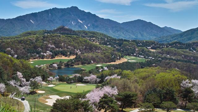 2018 골프 시즌|1. 녹색 코스 찾기