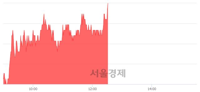코골든센츄리, 전일 대비 7.04% 상승.. 일일회전율은 9.81% 기록
