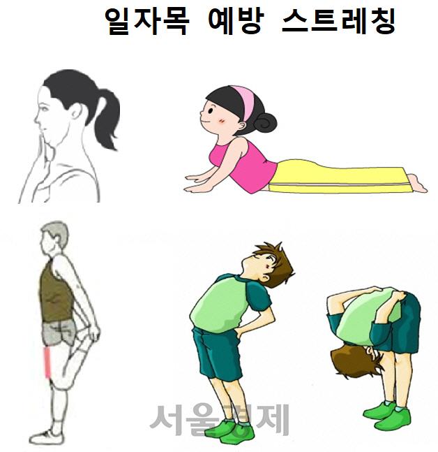 수능 수험생, 가벼운 운동·스트레칭·꿀잠이 '보약'