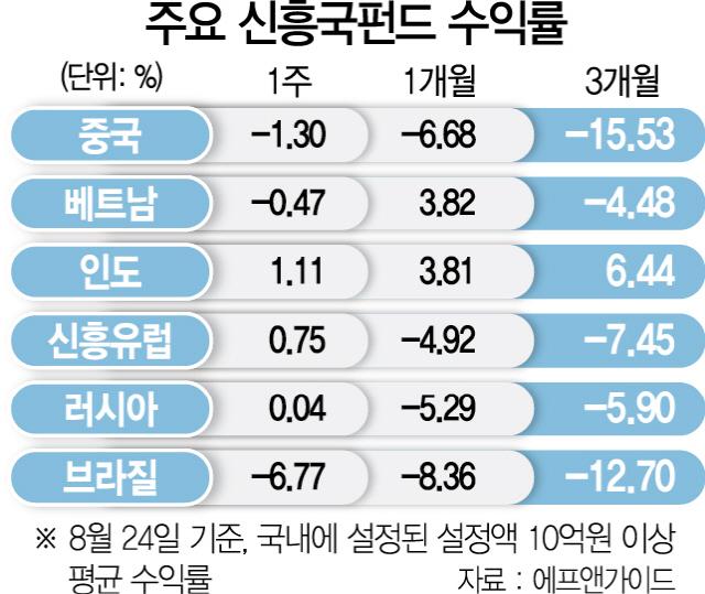 '신흥국 리스크 없다' 독야청청 인도펀드