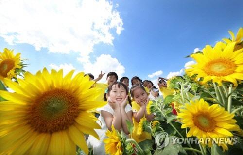 [오늘날씨] 아침 쌀쌀 오후 따뜻, 본격적인 '가을'이 성큼 다가왔다