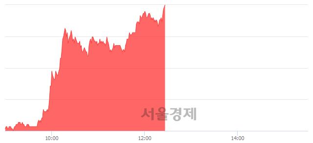 코녹십자엠에스, 상한가 진입.. +29.70% ↑