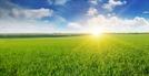 전국 개인 토지소유자 1,690만명…5년새 10% 증가
