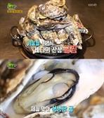 '생생정보' 8000원 굴찜 무한리필 맛집, 위치는?…김해 '거북이동네'