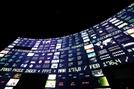 월가 기업들, 암호화폐 시장 진입 속도조절
