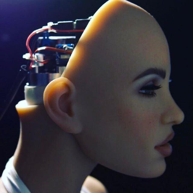 [그래픽텔링] 섹스로봇, 전투로봇...인간 대 로봇의 경쟁이 시작됐다