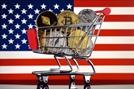 [이웃집 코인]④비트코인 중심지 미국...'진짜 화폐' 같은 코인 인기