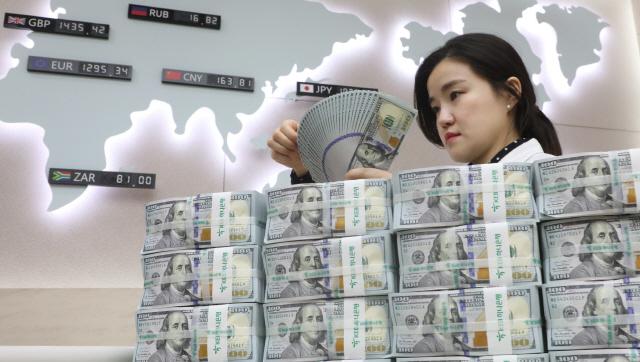 외환보유액 또 사상최대...불붙은 적정수준 논쟁