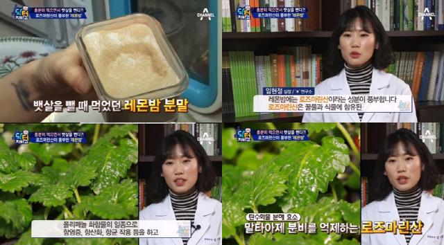 레몬밤 '체지방, 체내 염증↓' 우울증, 두통에도 탁월 '만능통치'