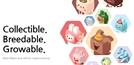 [League of DApp]고양이 말고 토끼를 키워보자…한국형 크립토키티 '비트펫'