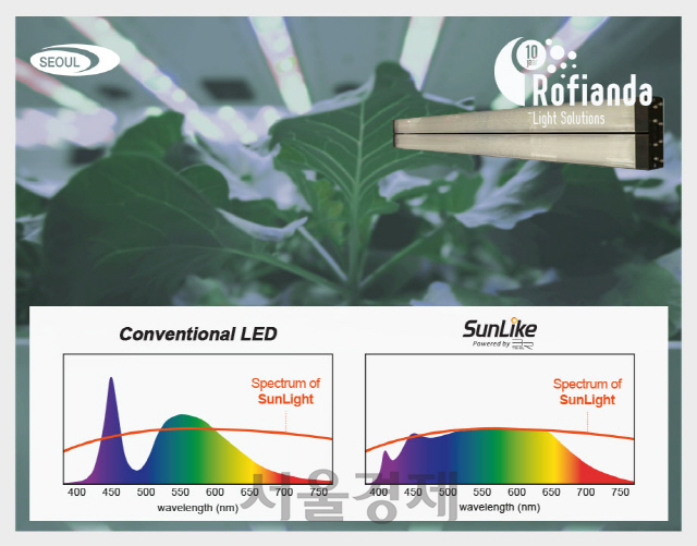 서울반도체, 농업강국 네덜란드에 식물재배용 LED 공급
