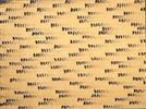 [조상인의 예(藝)-<100>이우환 '점으로부터']화폭 뒤덮은 수백개의 점...교감의 미학을 담다