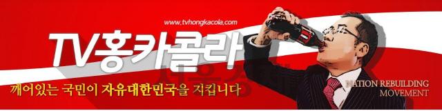 홍카콜라 실시간 모금 불법일까?...국회서 공방 예고