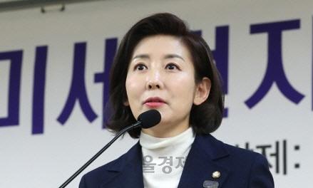 """나경원, """"좌익 활동 독립유공자 포함 우려""""…손혜원 저격?"""